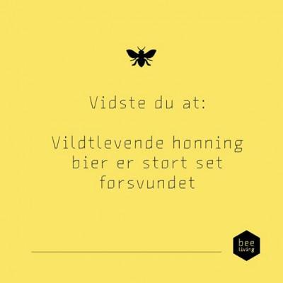 Vildebier
